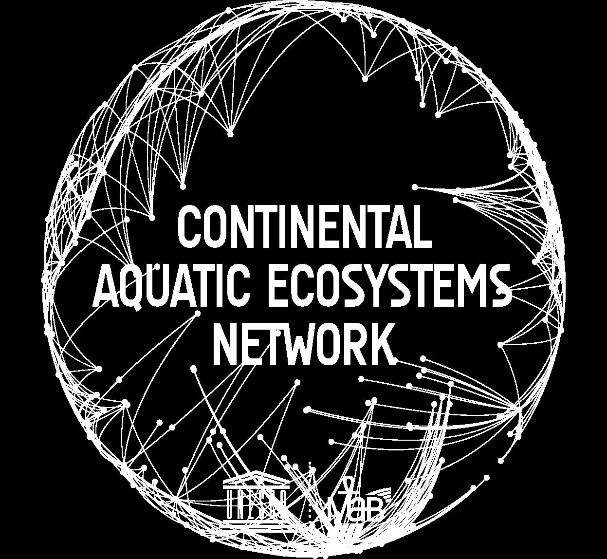 CAE MAB network