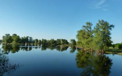 Model for the restoration of wetlands of the Volga-Akhtuba floodplain
