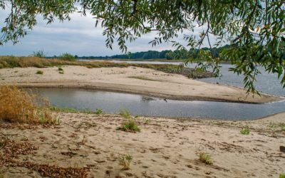 Middle Elbe large-scale nature conservation project